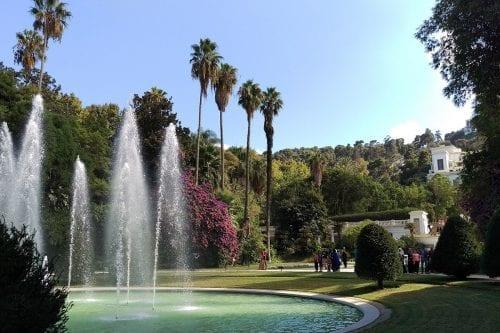 Thumbnail - The Botanical Garden of El Hamma in Algiers, Algeria