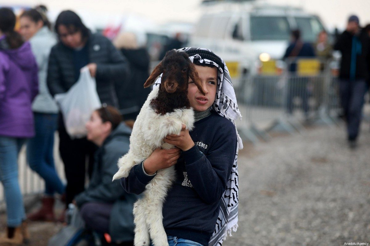 A Palestinian child holds a lamb in Jericho, West Bank on 18 January 2020 [Issam Rimawi/Anadolu Agency]