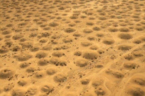 Discover Dilmun Burial Mounds, Bahrain